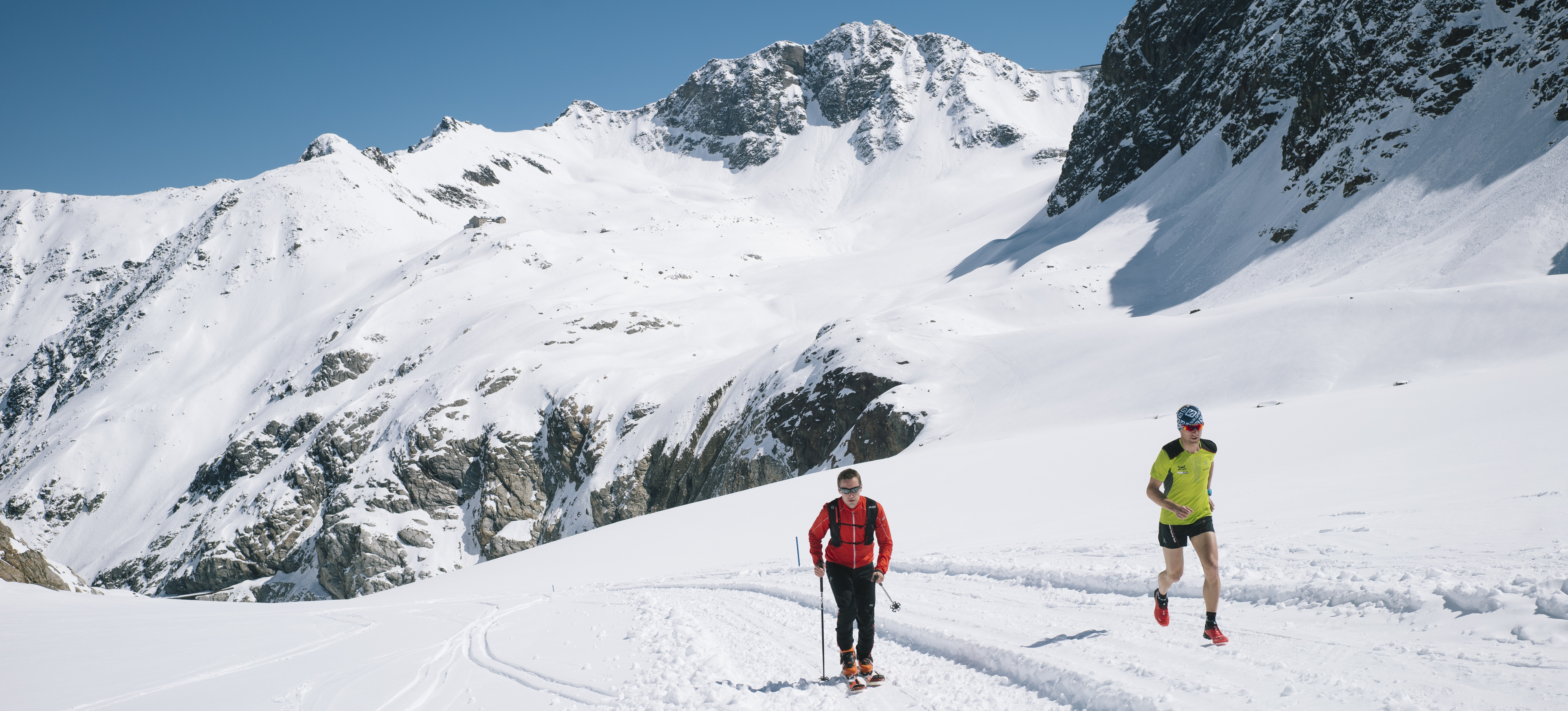 Wir suchen den Pitztaler Gletscherchamp