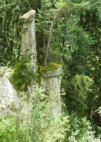 Erdpyramide in Wald