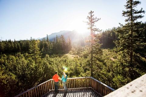 Piller Moor am Naturparkhaus Kaunergrat