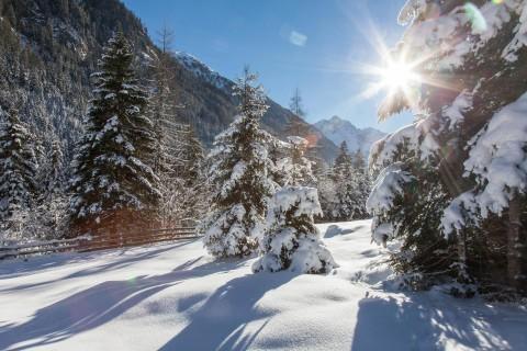 Winterwanderung im Tiroler Pitztal
