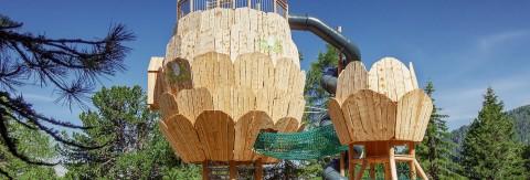 Der Zirbenpark im Wandergebiet Hochzeiger ist eines der Highlights im Sommer im Pitztal