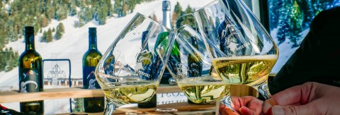 Präsentation Weingondel und Weinverkostung